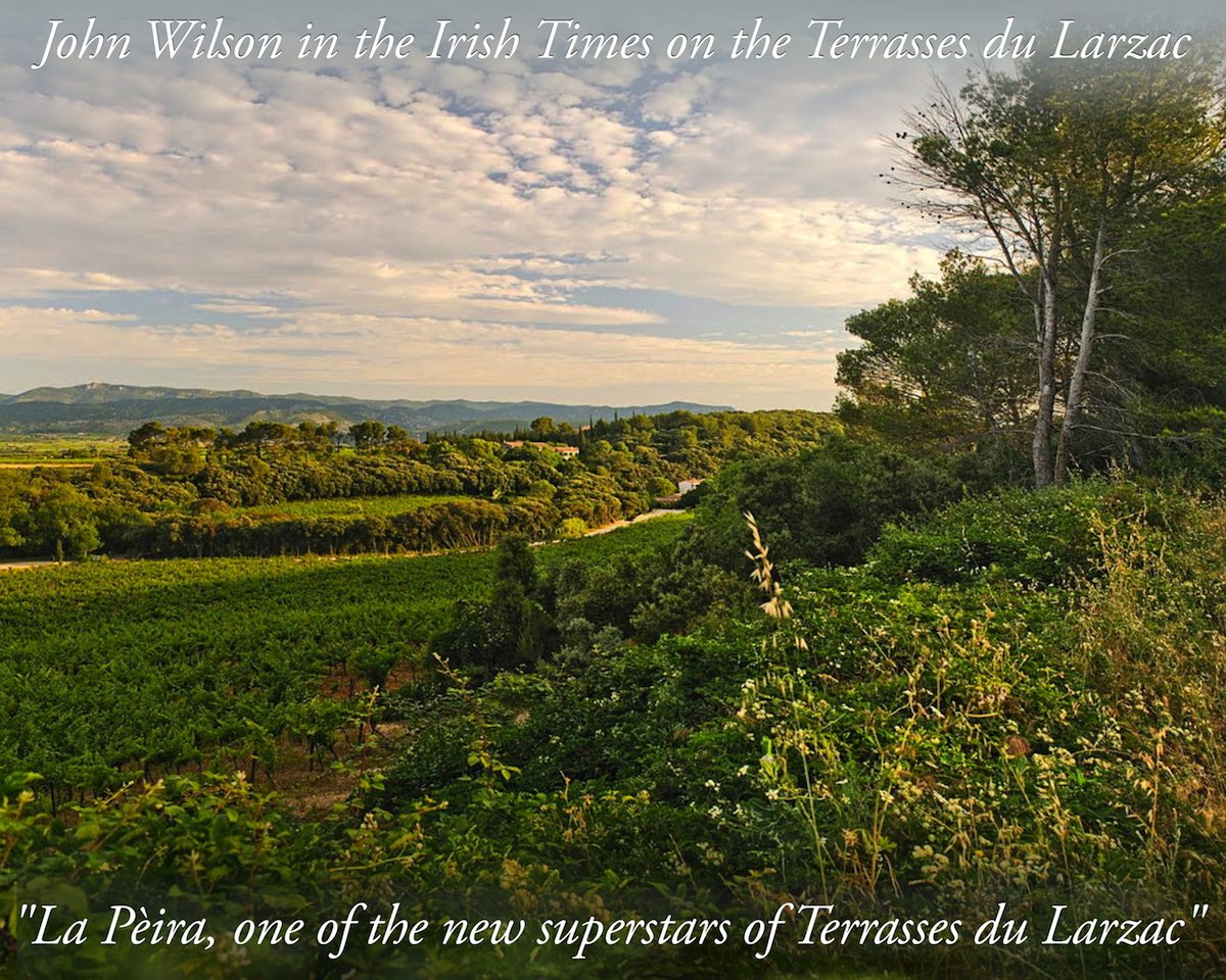 John Wilson's Article in the Irish Times on the Terrasses du Larzac La Peira