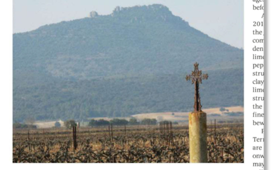 Terrasses du Larzac Regional profile by James Lawther MW in Decanter Magazine
