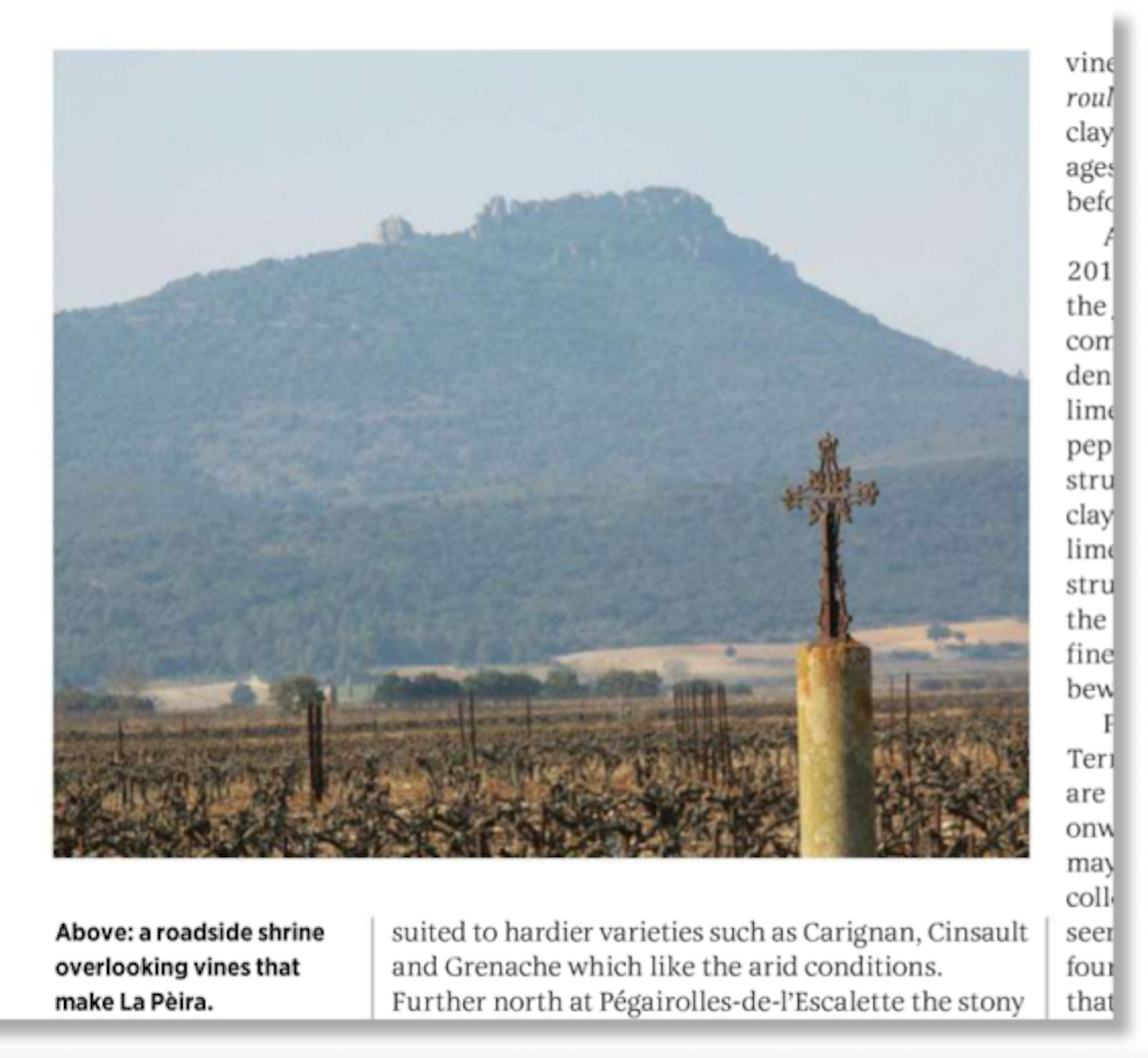 Terrasses du Larzac Regional profile by James Lawther MW in Decanter Magazine La Peira