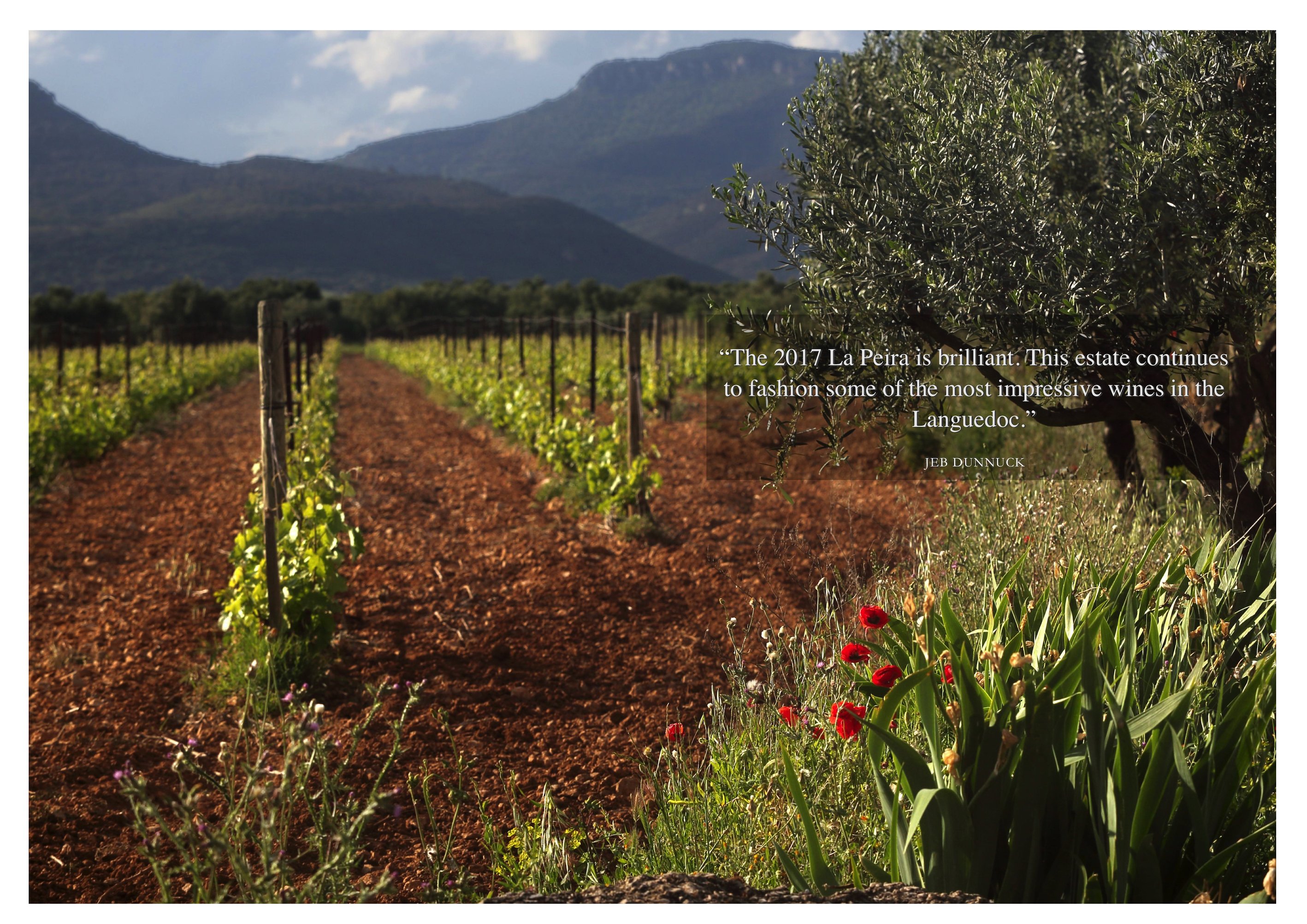 La Peira Vineyards | A Top Estate in France since 2004